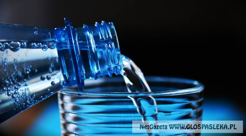 Rejsyty bez wody