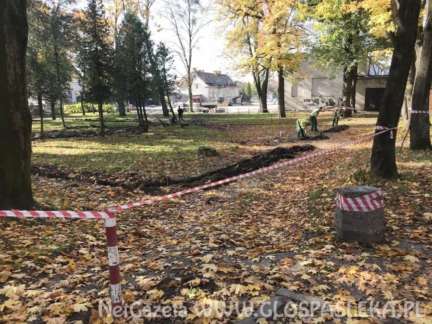Ruszyły prace w parku przy cmentarzu