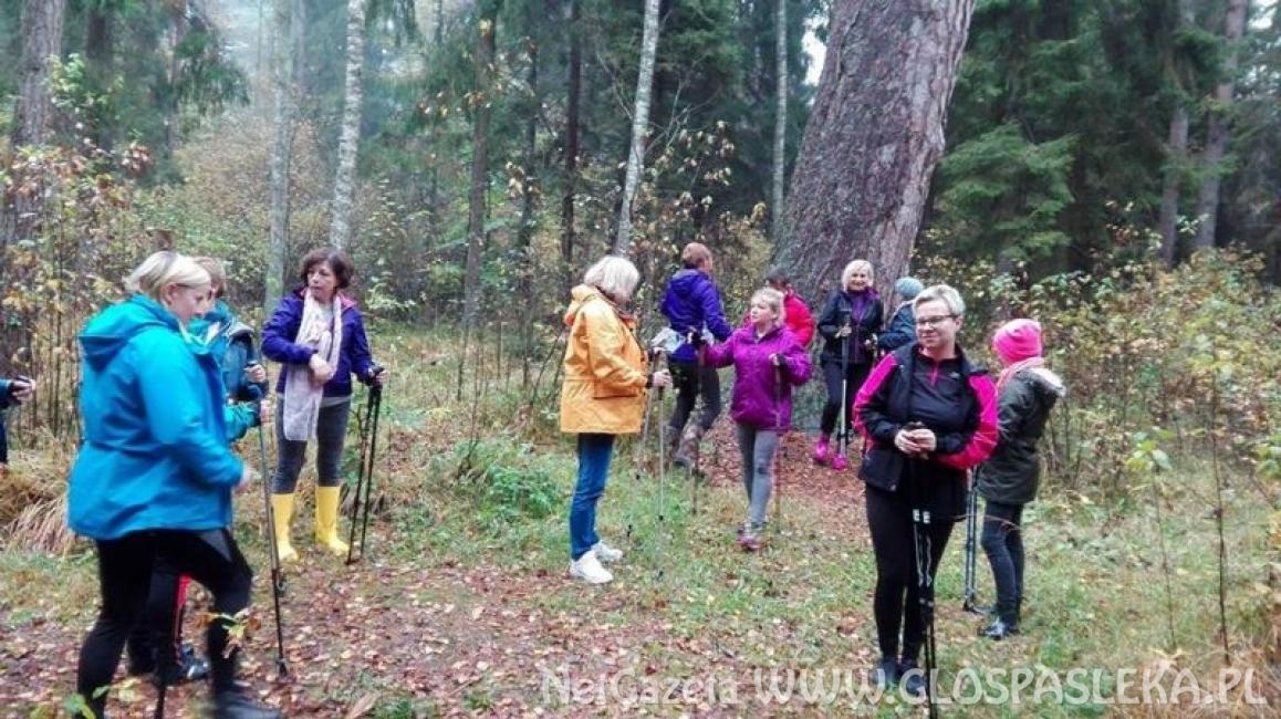 Spotkanie instruktażowe nordic walking