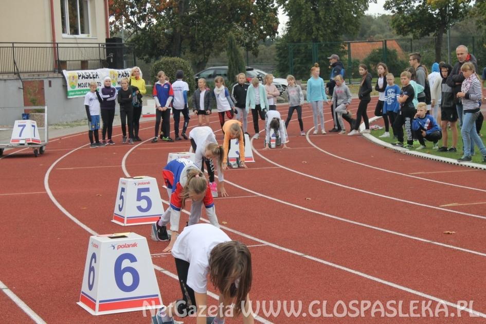 Najważniejsze sportowe wydarzenia roku 2017 r. w  Gminie Pasłęk