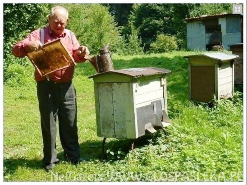 Zebranie pszczelarzy