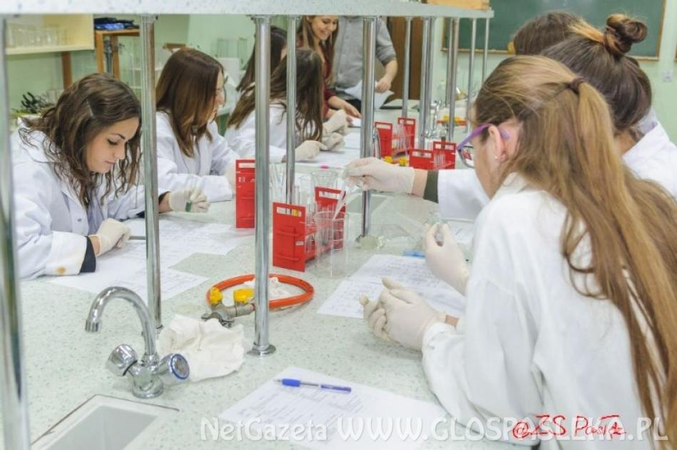Warsztaty chemiczne w LO pod okiem absolwentów