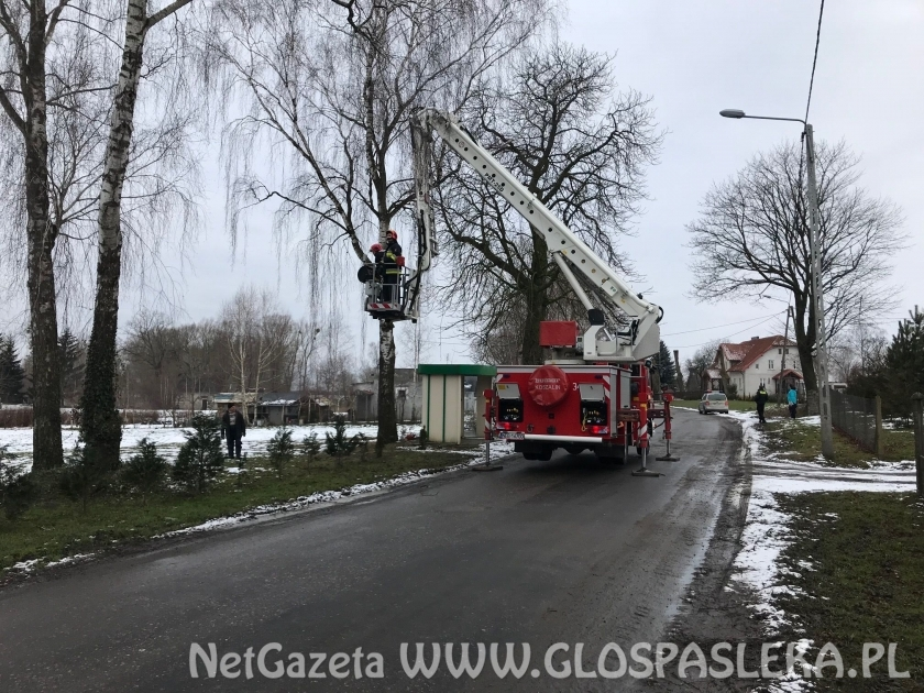 Pomogli strażacy