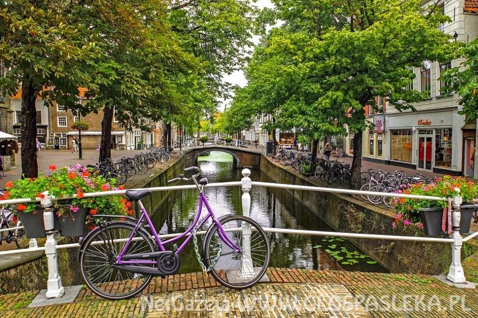 Praca w Holandii – o czym trzeba wiedzieć?