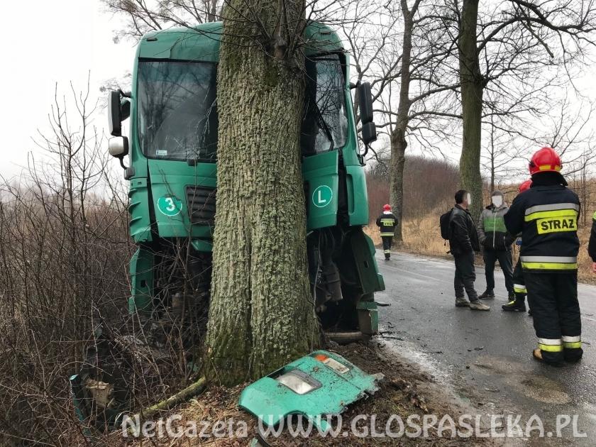 Ciężarówka na drzewie