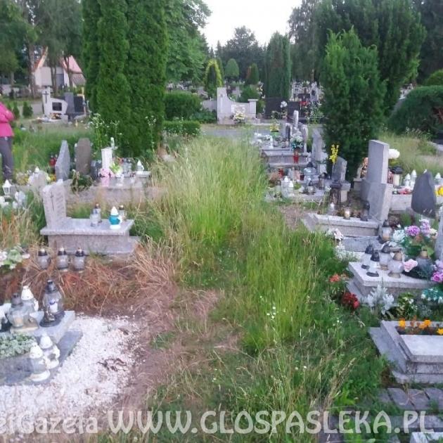 Interwencje – cmentarz