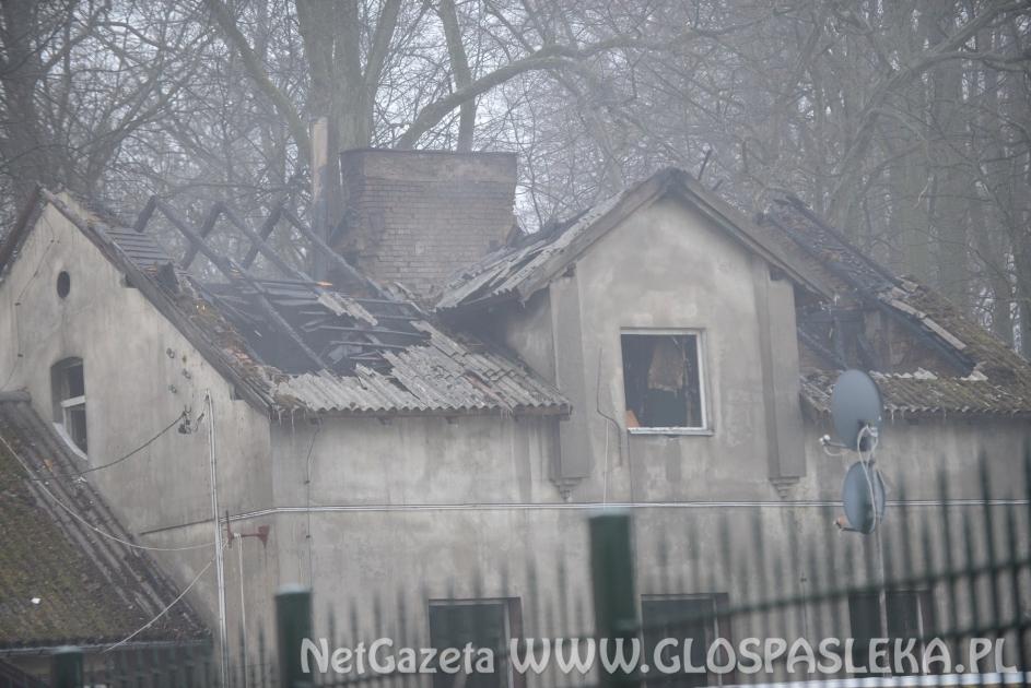 Pożar w Drulitach