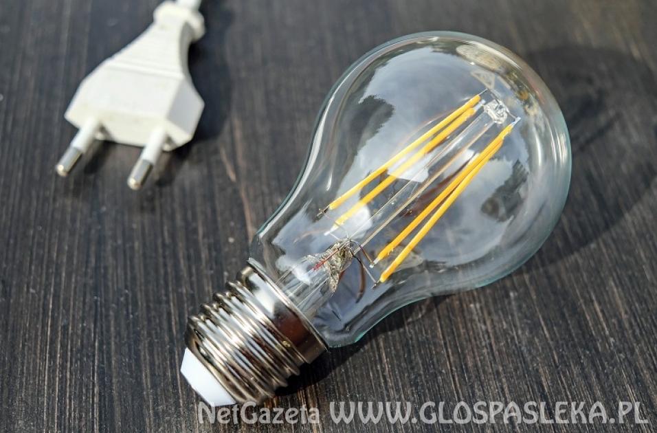 Oświetlenie LED. Bogactwo wyboru