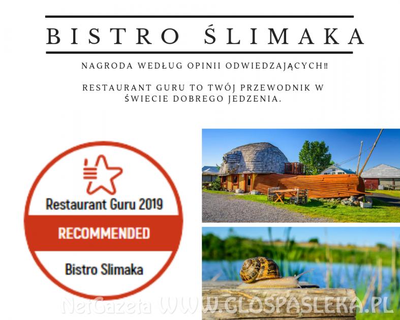 Światowe Restaurant Guru doceniło polskie ślimaki