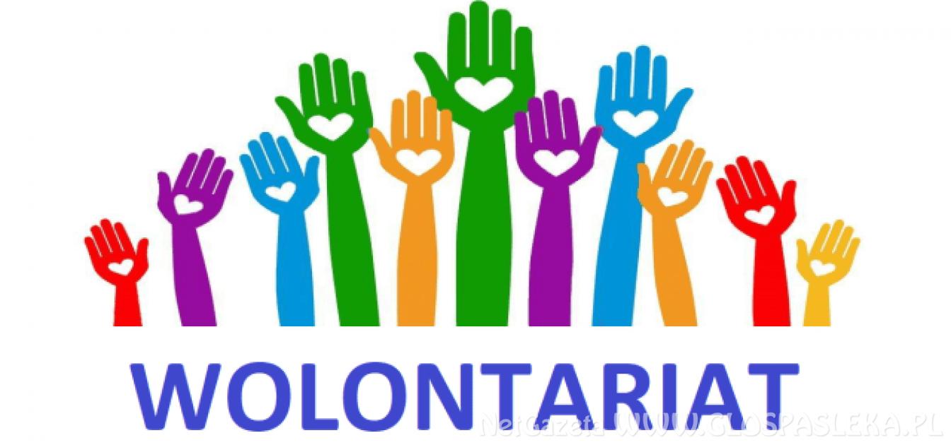 Wolontariusz Powiatu Elbląskiego 2020