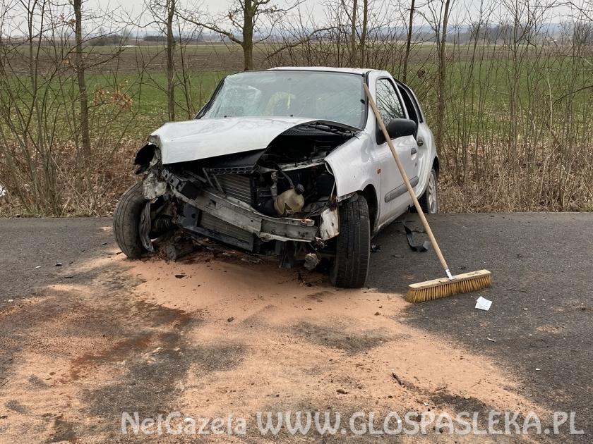 Renault clio na drzewie