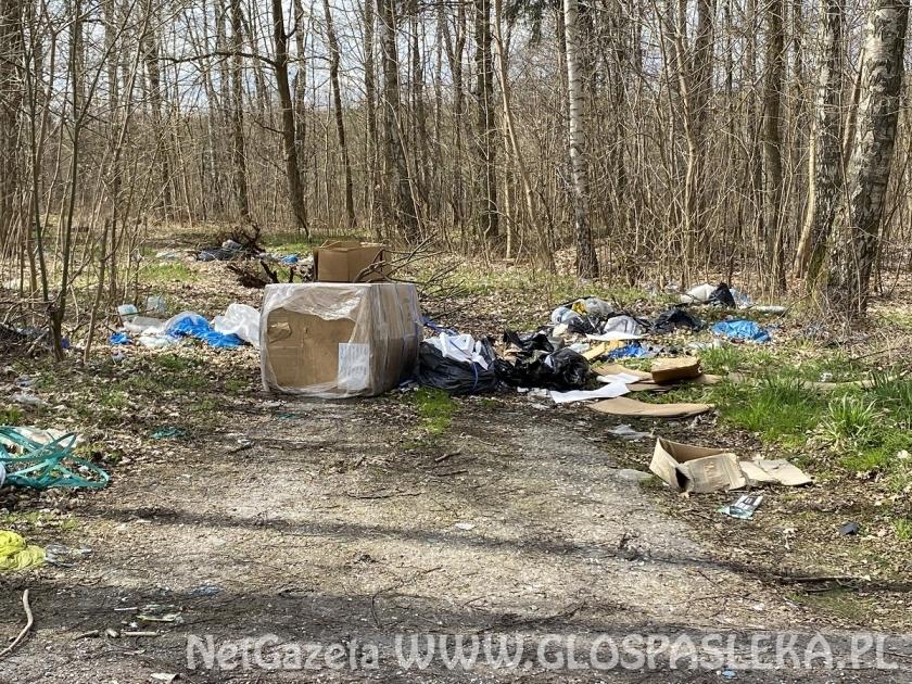 Wysypisko śmieci koło ronda Północ