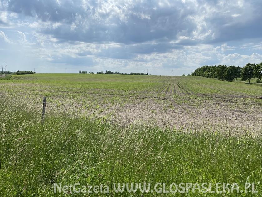 Powiat sprzedaje grunty