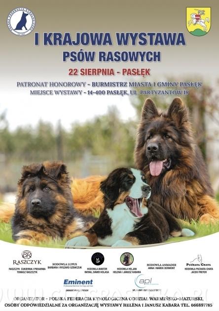 Niedziela 22 sierpnia – wystawa psów rasowych